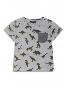 Boys dinosaur top 2-8 Years