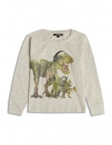 Boys Dinosaur long sleeve top